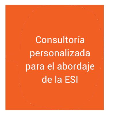Consultoría personalizada para el abordaje de la ESI